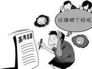 上海新高考第2年 24个院校专业组96个格子怎么填