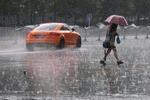 利奇马带来强降水沈阳全市民办教育机构停课4天