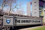 新西兰奥克兰大学官宣:接受中国高考成绩