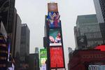 亚美联盟发布纽约州亚裔人口报告华裔人数近74万