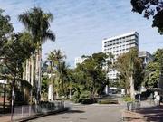2020中國粵港澳大灣區大學排名 港大躋身世界一流