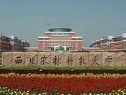 2020中國三線城市最好大學排名 西農林第一