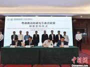 粵港澳高校聯盟組建10個新專業聯盟