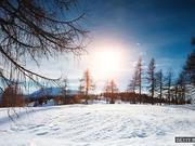 """英语小测验:和""""冬天""""相关的词汇"""