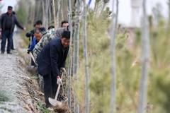 Tree planting event held for upcoming Earth Day in China's Gansu
