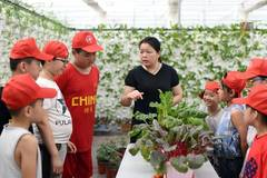 Children learn agricultural knowledge during summer vacation in N China's Hebei