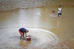 Some parts of Jiangxi suffer from drought for days
