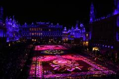 Giant flower carpet unrolled in central Brussels