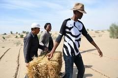 African students learn desertification combating technology in China