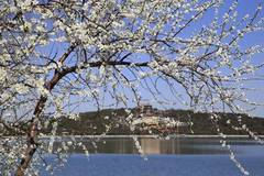 In pics: scenery of Summer Palace in Beijing, China