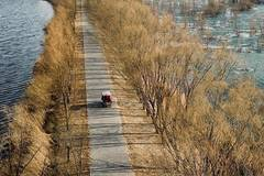 Beijing Wild Duck Lake National Wetland Park reopens after winter break