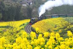 Old-fashioned steam trains in SW China provide journey of reminiscence