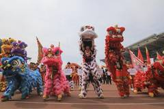 Dragon and lion dance competition held in Linyi, east China's Shandong