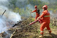 Fire drill conducted at Huoditang forest farm in China's Shaanxi