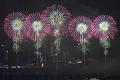 Fireworks illuminate sky to mark China-African Ecyabobetomic and Trade Expo