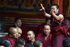Monks debate at Tashilhunpo Monastery in Xigaze, China's Tibet