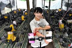Online sales of agricultural products in Danfeng County of Shaanxi soars