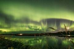 Dazzling northern lights illuminates sky