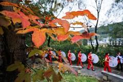 Autumn scenery of Zhinan Village in Hangzhou, Zhejiang