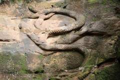 1,000-year-old stone dragon opens to public