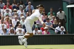 Djokovic beats Ward 3-0 at 2016 Wimbledon Championships