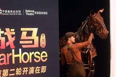 Mandarin version of War Horse drama to be on stage in Beijing