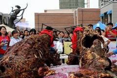 Free feast of roast camel in NW China