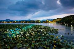 Night view: Hangzhou, host city of G20 Summit
