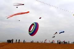 Kite fair held in S China's Qinzhou