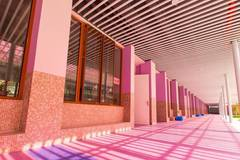 Primary school's decoration highlights warmth and growth