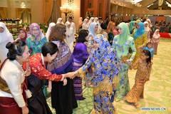 Brunei's royral family celebrate Hari Raya Aidilfitri festival