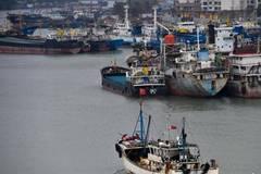 Chinese coastal province braces for typhoon Haikui