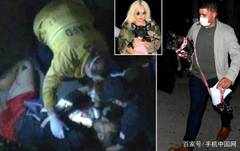Lady Gaga's Dog Walker Shot, Dogs Stolen