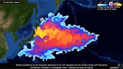 Distribution of the radioactive contamination in the Pacific Ocean from Fukushima