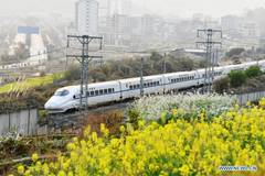 Bullet trains pass by fields dotted with blossoming plants in Guizhou