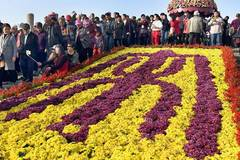Tourists enjoy chrysanthemums at Millennium City Park in C China