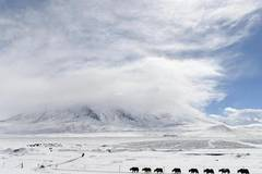 Snow scenery on Pamir Plateau, NW China's Xinjiang