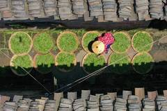 Tea planting helps alleviate poverty in central China's Hunan