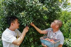 Villagers do live broadcasting to show rural life and healthy food products in Jiangxi