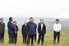 Xi makes inspection tour in Shandan, Gansu