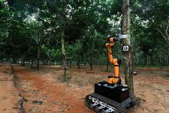 Robot starts on-site rubber tapping trial run in China's Hainan