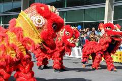 People across world celebrate upcoming Chinese New Year