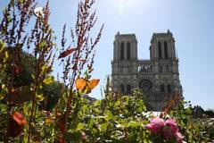 Closed for over a year, Parvis Notre-Dame reopened to public from May 31