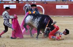 Spanish matador fatally gored, first time since 1985