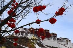 Decorations seen in front of Potala Palace to greet Spring Festival, Tibetan New Year