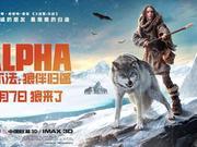 新浪观影团《阿尔法:狼伴归途》3D版免费抢票