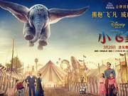 新浪觀影團《小飛象》IMAX3D版盧米埃影城搶票