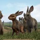 《兔子共和國》發佈首款預告 一美尼子領銜配音