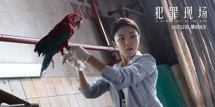 颜卓灵获赵薇青睐 新片《犯罪现场》追击古天乐