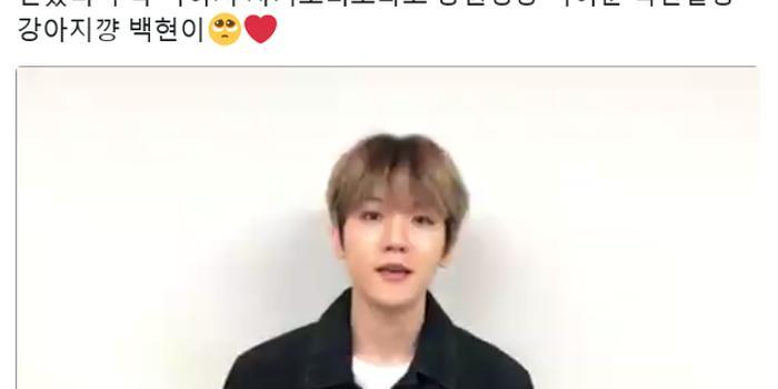 EXO伯贤录视频为生病粉丝打气:希望你能尽快康复